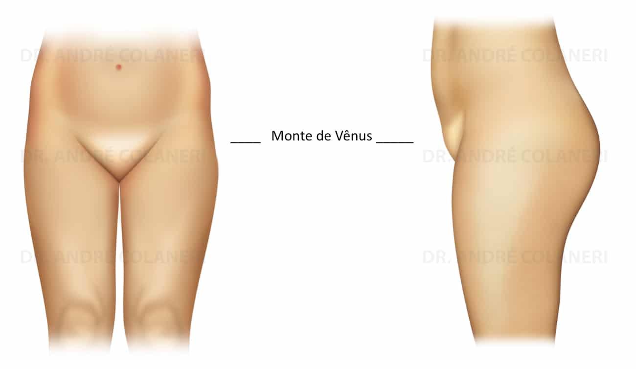 Monte de Vênus
